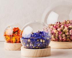 Les boules de plantes