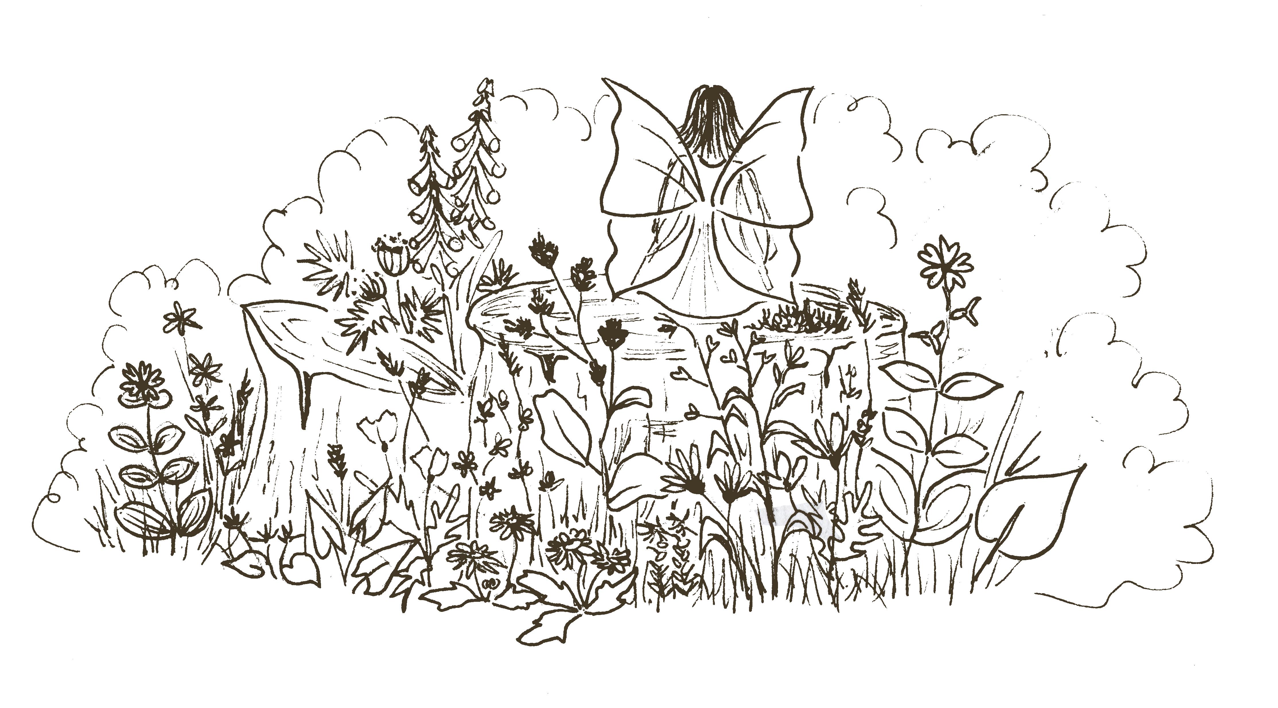 Formation : Les plantes messagères
