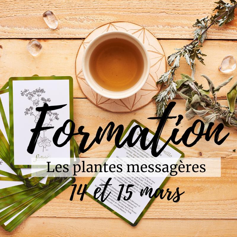 """Formation """"Plantes Messagères - Initiation"""""""